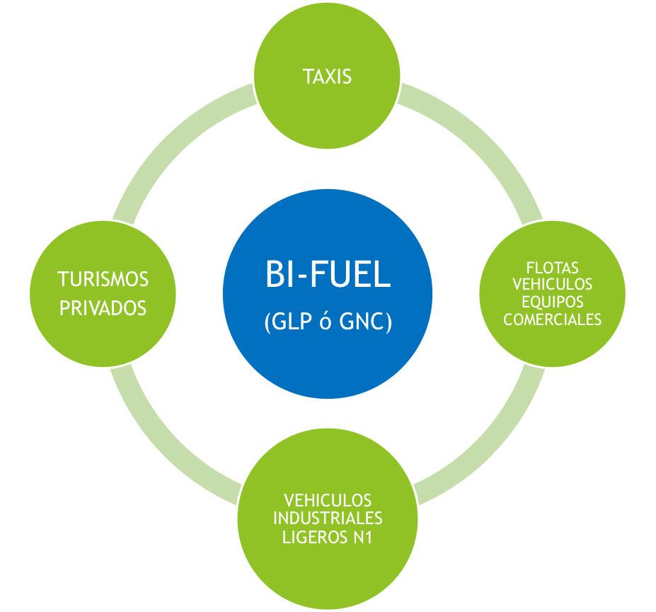 Bi-Fuel